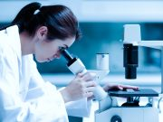 South Korean researchers found PPT ginsenosides can reverse multidrug resistance