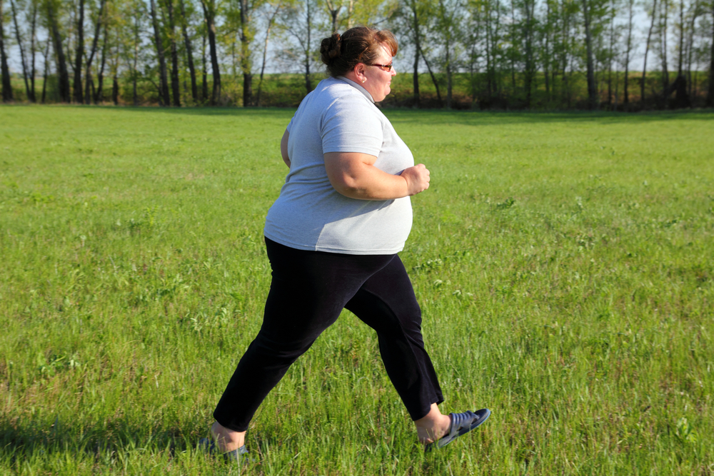 Obesity increases the risk of developing breast cancer and ginsenosides can be an adjuvant agent