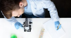 How ginsenosides inhibit tumor growth?