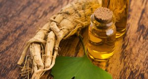 Where to buy the best Panax/Korean ginseng in Australia?