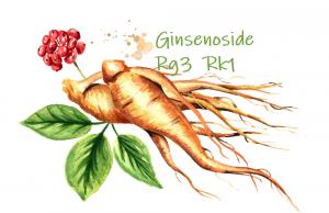 Ginsenoside Rk1 may help treat degenerative diseases