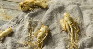 Is ginseng good for cancer patients?