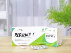 Redsenol: the best ginseng and ginsenoside supplement in 2021